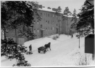 HorseWagonSnowSweden