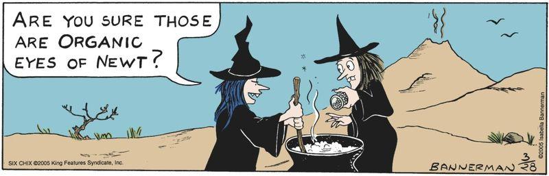 WitchOrganicNewt