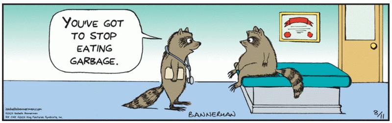 Bannerman Raccoon doctor cartoon