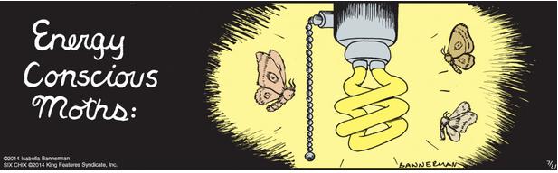 Isabella Bannerman Moths Cartoon
