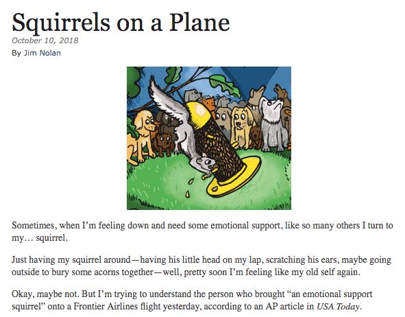 Humor Outcasts Squirrel