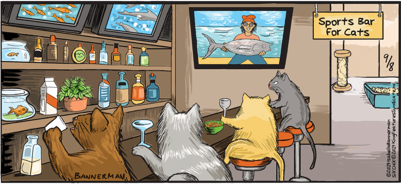 Bannerman Cat Sports Bar