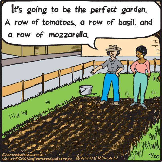 Bannerman gardening acrtoon