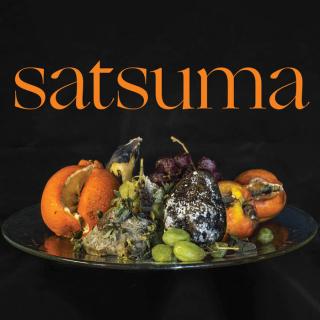 Satsuma Life Blender